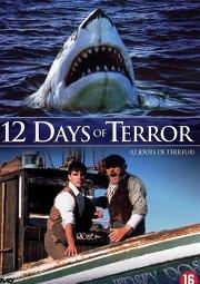 Постер 12 дней страха