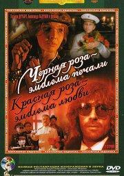 Постер Черная роза — эмблема печали, красная роза — эмблема любви