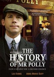 Постер История мистера Полли