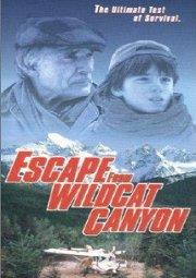 Постер Побег из Каньона дикой кошки