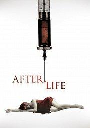Постер Жизнь за гранью
