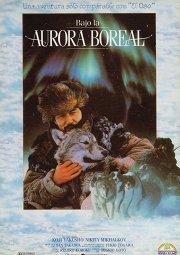 Постер Под северным сиянием