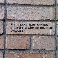 Фото Илья Бабашкин