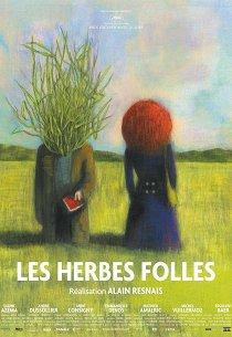 Дикие травы