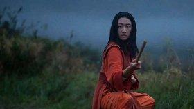11 сериалов про боевые искусства