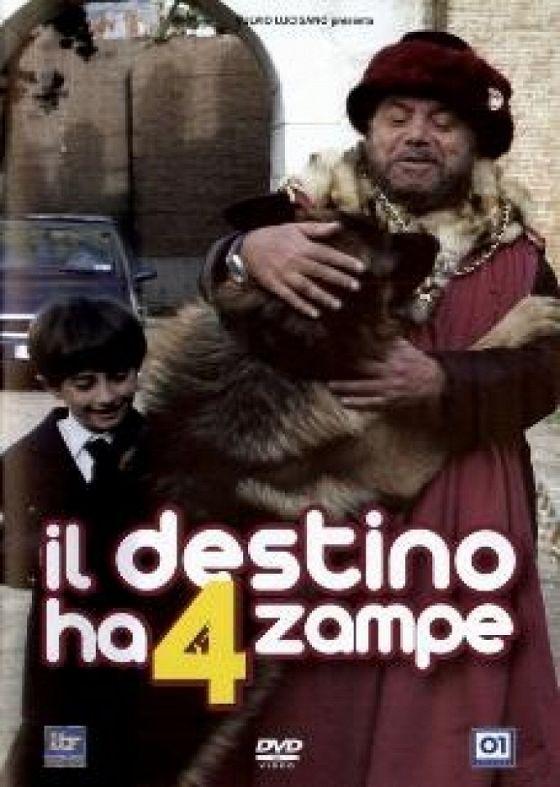 Четвероногая звезда (Il Destino ha 4 zampe)