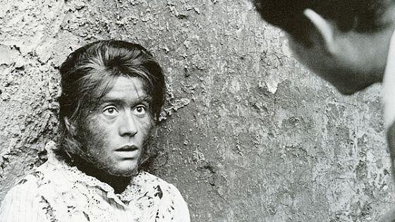 Женщина-обезьяна (La donna scimmia)