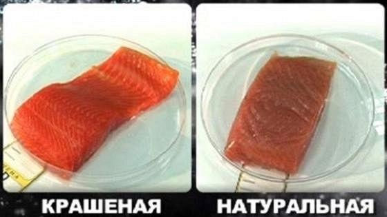 Среда обитания. Крашеная рыба