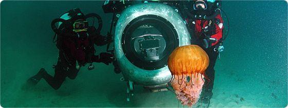 Тайны подводного мира 3D (Deep Sea 3D)