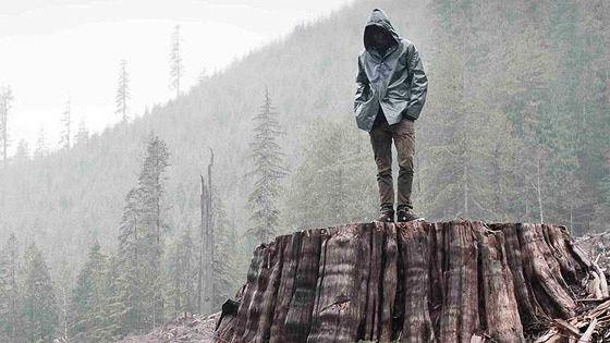 Когда дерево падает: История Фронта освобождения Земли (If a Tree Falls: A Story of the Earth Liberation Front)