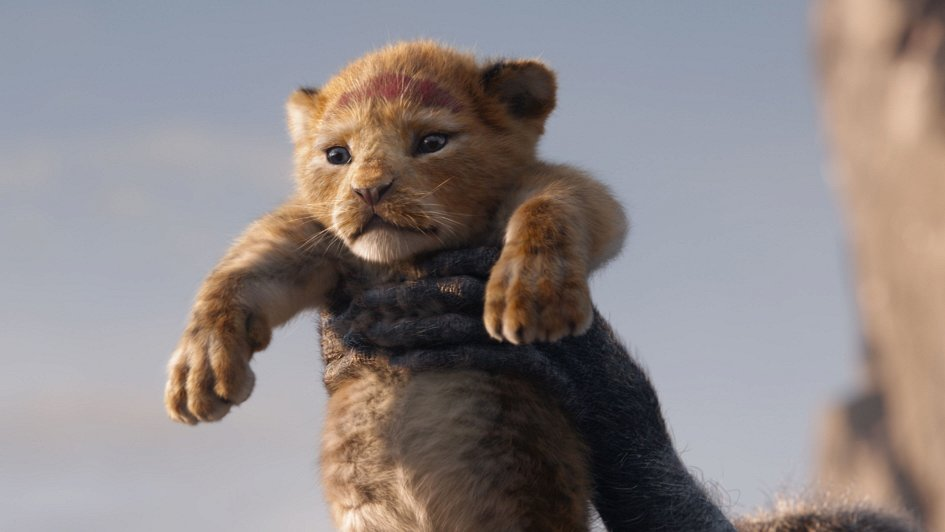 Картинки по запросу король лев