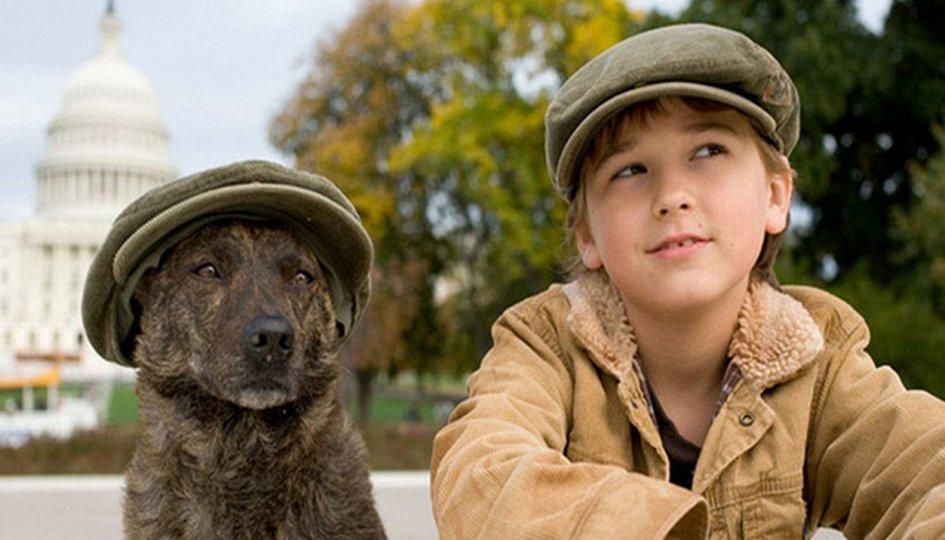 Кино: «Первый пес»