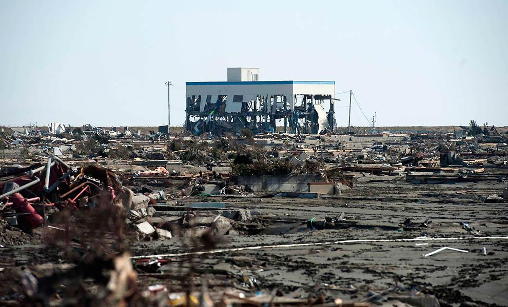 Tsunami disaster essay