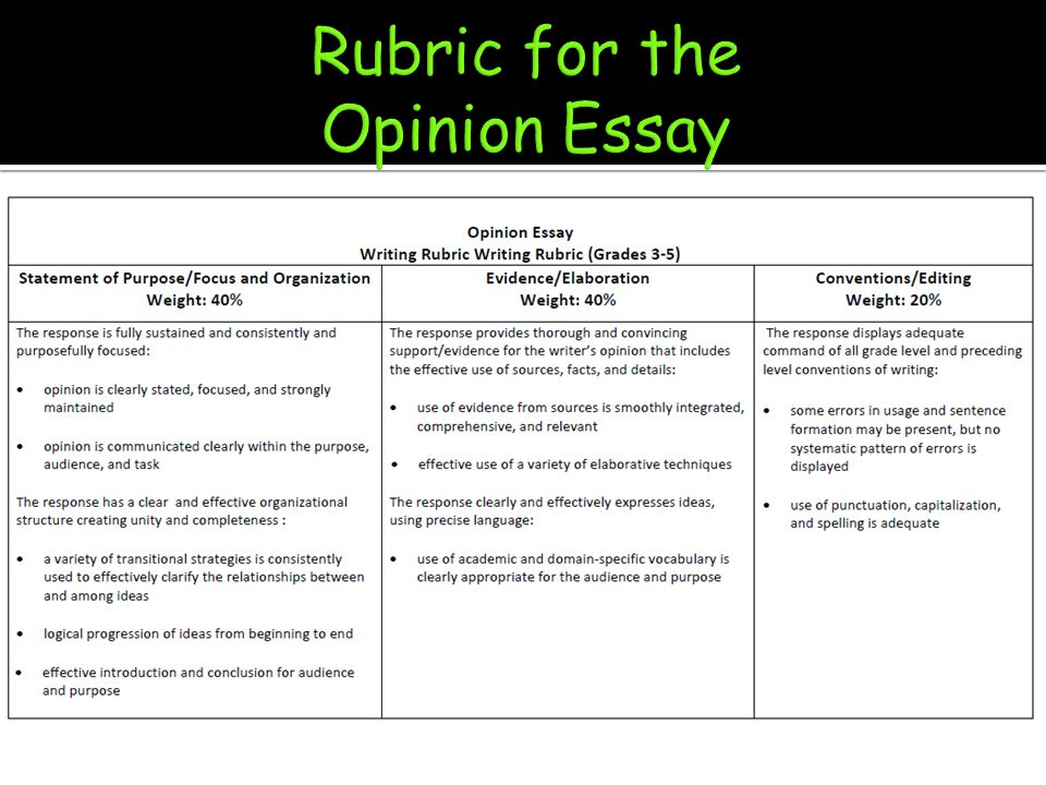 Opinion essay samples