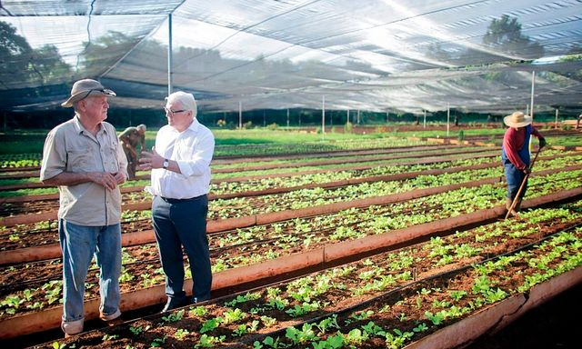 Фермерское хозяйство в остров Афон