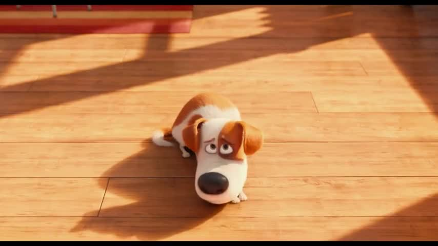 The Secret Life of Pets - Christianity Today