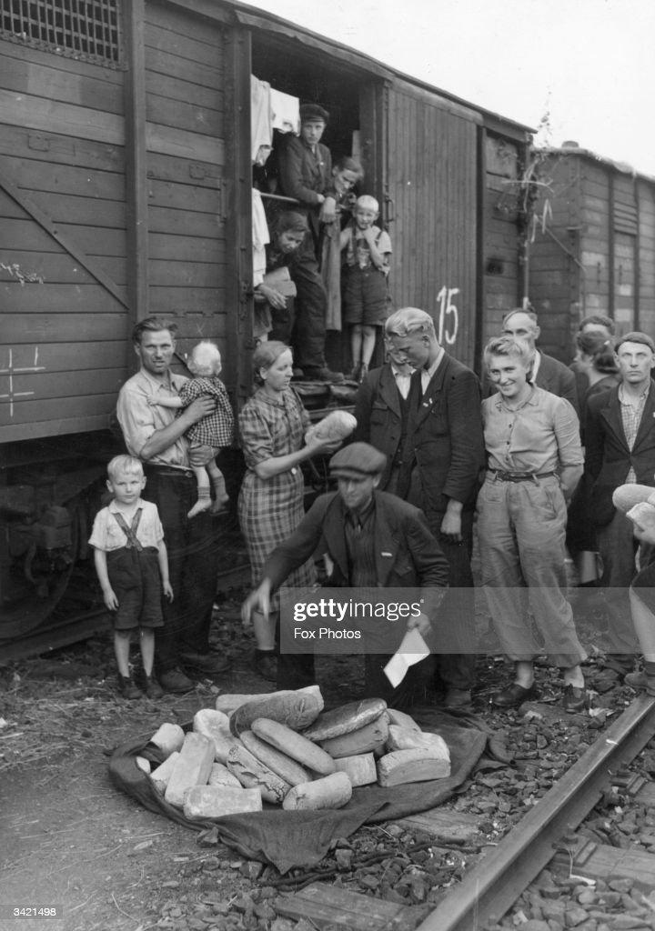 Nazi Concentration Camps Essay Examples - Kibin