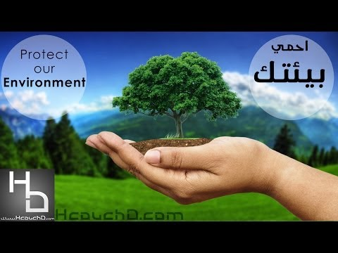 Short essay on protection of environment
