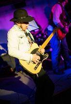 ZebraWood Blues Band