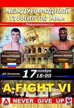 Международный турнир по ММА A-FIGHT VI