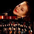 Камерный «Вивальди оркестр». Светлана Безродная (скрипка)